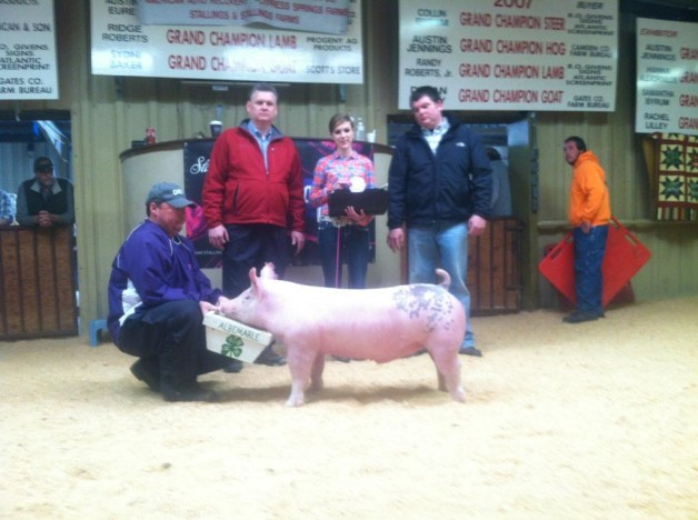 Caitie Goss with the Reserve Champion Middle Weight Pig at the 2013 East Coast Extravaganza