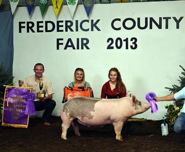 Grand_Champion_Market_Hog_2013_Frederick_County_Fair_Shown_Ashten_Sfarnas.jpeg