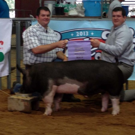 Reserve Champion Barrow and Reserve Champion Overall Market Hog at the 2013 North Carolina State Fair Open Show