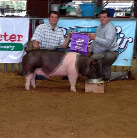 Grand Champion Barrow and Grand Champion Overall Market Hog at the 2013 North Carolina State Fair Open Show
