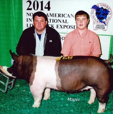 The McCall Family with another 7th In class at the 2014 Louisville, KY North American International Livestock Exposition