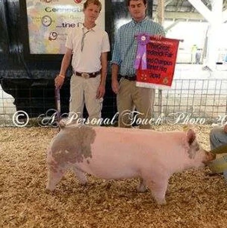 The Miller Family with the Grand Champion Overall at the 2014 Frederick County, Maryland 4-H Livestock Show