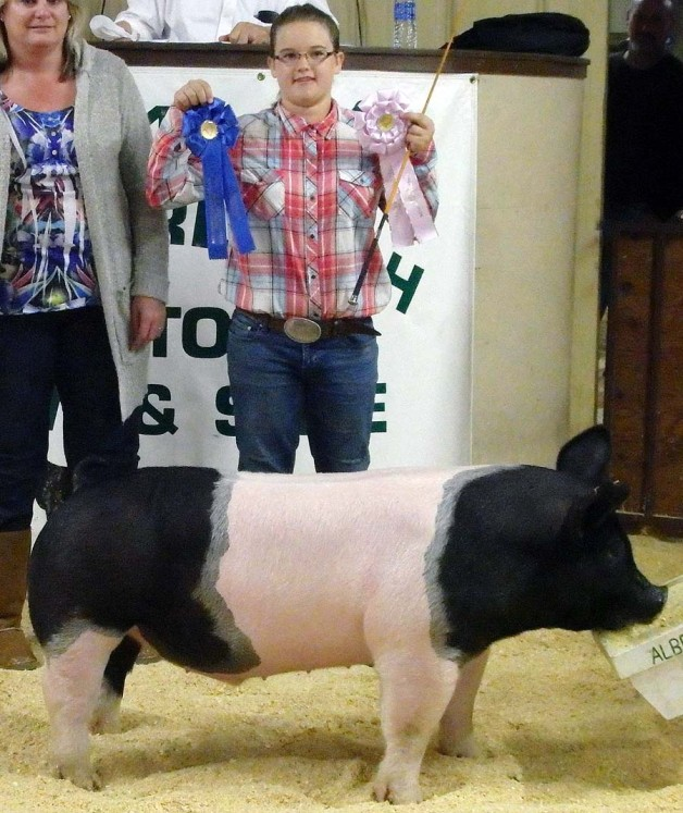 Madison Wooten with the Reserve Champion at the 2015 Albemarle 4-H Livestock Show
