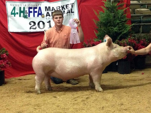 Zach McCall with the Reserve Champion at the 2015 Staunton, VA Market Animal Show