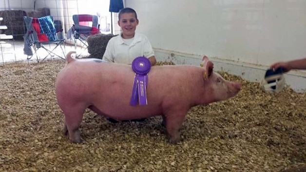 The Nestor Family with the Grand Champion Overall at the 2015 Barbour County, WVA 4-H Livestock Show
