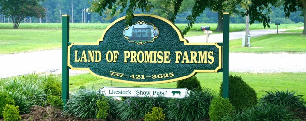 Land of Promise Farms