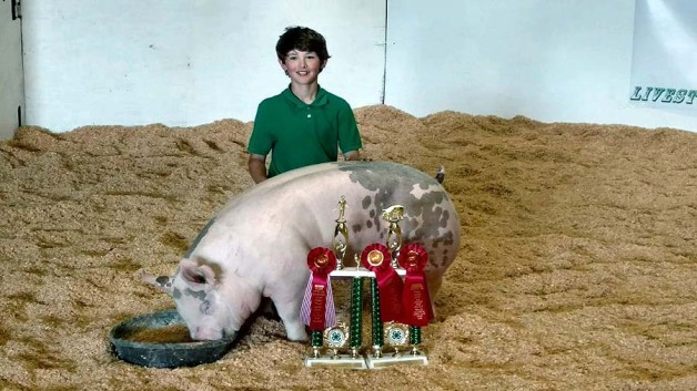 The Pippins Family with the Reserve Champion at the 2017 Chowan, NC 4-H Livestock Show