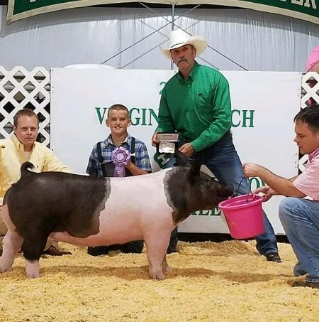 Logan Gentry with the Reserve Champion at the 2017 Virgina Beach, VA Livestock Show