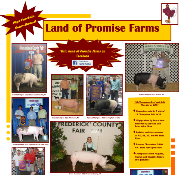 2011 Virginia State Fair Flyer