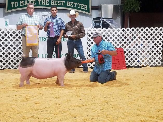 Dawson Cox with the Reserve Champion at the 2018 Virgina Beach, VA 4-H Livestock Show