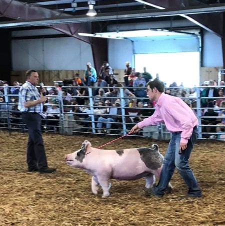 Zach McCall with the Reserve Champion • Division 4 at the 2019 Augusta County Market Animal Show