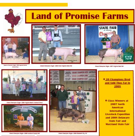 2008 Virginia State Fair Flyer