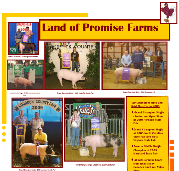 2009 Virginia State Fair Flyer