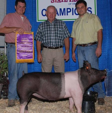 2009 Grand Champion Gilt Virginia State Fair
