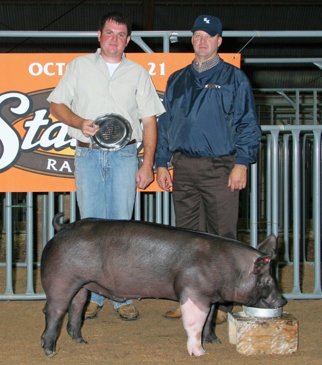 The Grand Champion Barrow in the Open Show at the 2012 NC State Fair